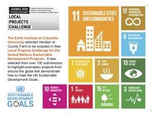 SDG+Goals